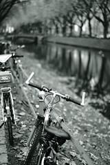bike@Kö, Düsseldorf 33 (Amselchen) Tags: bike bicycle water trees reflection mono monochrome bokeh blur dof depthoffield bnw blackandwhite kö düsseldorf sony a7 alpha7 zeiss carlzeiss sonnart1855 sonnar1855za fe55mmf18za sonyilce7