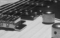 Electric  Vibes (lucazagolin) Tags: macromondays memberschoicemusicalinstruments macro bw instruments guitar music 7dwf allegrisinasceosidiventa