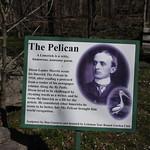 LThe Pelican, Limerick thumbnail