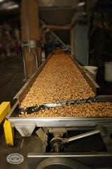 0090BAR Almond17 by BAYAREA ROADSTERS