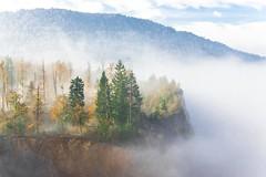A foggy morning bove the Verd Quarry (rlubej) Tags: notranjska hillsmountains fog forest colors