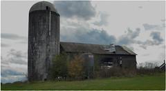 Losing it.s roof. (cscott_va.) Tags: barn augusta county virginia