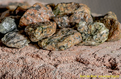 Stone grit (Bert de Boer) Tags: stone grit mondays marcro rhyming zone marcromondays bertdeboer macromondays stonerhymingzone