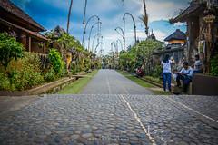 Penglipuran village - B A L I (ajanth.v) Tags: penglipuran village traditional balinese bali indonesia ancient temple landscape outdoor hindu nikon d7100 travel travelphotography traveler 18140mm photography