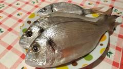 Fresh sea fish (RoBeRtO!!!) Tags: rdpic fresh fish sparusaurata food pesce fresco orata cibo