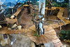 Xing Ya (星雅) 2017-10-10 (kuromimi64) Tags: ouwehandsdierenpark ouwehandszoo zoo 動物園 rhenen レーネン オランダ netherlands nederland bear クマ 熊 giantpanda ジャイアントパンダ panda パンダ 熊猫 大熊猫 xingya 星雅