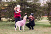 (Rebecca812) Tags: portrait candid obedience train dog pet labradorretriever yellow sweater cute treat girls childhood tween canon hats vests knithats trees evergreen outdoors people girl sister family togetherness rebeccanelson rebecca812