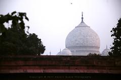 Glimpse of Taj (apoorvg1) Tags: taj tajmahal travelforks mughal mumtaj agra uttarpredesh dome white marble morning india incredible wonders photography apoorvgupta architecture travel blogger blog calm history