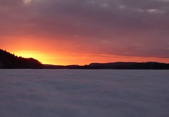Good morning sunshine (jondewi52) Tags: colours colour clouds cloud cold dawn frozen forest fjällsjö ice jämtland landscape morning nature norrland nofilter nophotoshop outdoor outdoors river riverbank snow sky sunrise sun trees tree winter woods