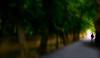 F_47A0280-2-Canon 5DIII-Tamron 28-300mm-May Lee 廖藹淳 (May-margy) Tags: 曾經 maymargy 人像 背影 剪影 樹林 小路 晃動 重複曝光 長曝 模糊 散景 portrait viewfromback backlighting silhouette motion longexposure woods road incameradoubleexposure f47a02802 blur bokeh streetviewphotography 街拍 mylensandmyimagination 天馬行空鏡頭的異想世界 naturalcoincidencethrumylens 心象意象與影像 線條造型與光影 linesformandlightandshadow taipeicity taiwan repofchina 台北市 台灣 中華民國 canon5diii tamron28300mm maylee廖藹淳