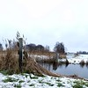 The day after.... (Jambo53 (!)) Tags: landscape winter sneeuwstorm snowstorm netherlands robertkok natuur nature snw sneeuw pole fence paal hekwerk riet water sloot