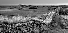 HADRIAN'S WALL (pajacksonartist) Tags: hadrian hadrians wall emperor frontier rome roman empire grass landscape stone