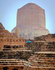 Seul parmi les pierres sacrées (mcastonguay60) Tags: delhi inde indiscrétionindien sarnath temple boudhisme uttarpradesh