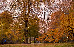 1341_0293FLOP (davidben33) Tags: newyork central park street streetphotos people nature trees bushes leaves colors green yellow blue sky cloud lake portraits women girl cityscape landscape autumn fall 2017 beauty