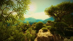 The Witcher 3 (bokkir) Tags: games videogames geralt trees grass witcher thewitcher3 atmosphere landscape forest