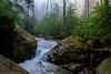 Morgan Run (clare j kaczmarek) Tags: laurelhighlands morganrun fayettecounty waterfalls rocks boulders rhododendron mountainstreams hemlocks