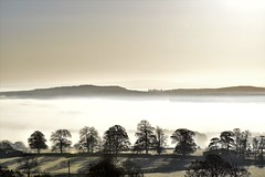 Eden Valley, Penrith, Cumbria, a misty morning blanket (vincocamm) Tags: cumbria morning sun misty fog sunrise penrith winter autumn frost frosty moody happy nikond5500