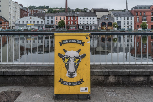 EXAMPLES OF PAINT-A-BOX STREET ART IN CORK CITY CENTRE [PHOTOGRAPHED 2017]-133903