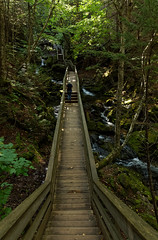 Dickson Falls - Fundy Nationalpark (wolf4max) Tags: canada fundynationalpark dicksonfalls nationalpark park nature forest waterfall water