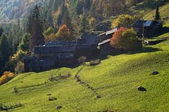 _DSC5166 (frangher) Tags: pagliari carona valbrembana lombardia italia italy autumn autunno colori montagna nikon d3100 orobie landscape