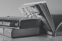 Love To Read! (BGDL) Tags: lightroomcc nikond7000 bgdl afsnikkor50mm118g monochrome niftyfifty blackandwhite books novels thrillers reflections afewofmyfavouritethings weeklytheme flickrlounge