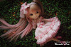 Annabelle, Pullip Tiphona (Mundo Ara) Tags: annabelle pullip tiphona doll groove innocent world lolita