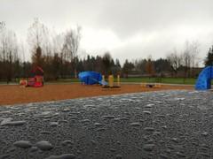 Rain focus. (thnewblack) Tags: manualfocus rain depthoffield lg v30 android outdoors manual park 13mp f19 smartphone cameraphone britishcolumbia