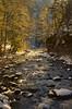 DSC_9315 Tanner Creek (MichaelGrant999) Tags: tanner creek columbia gorge oregon water light sunbeam snow ice