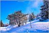 Hiver montagnard (jamesreed68) Tags: grandballon alsace 68 vosges 88 hautrhin montagne france hiver froid neige paysage nature canon eos 600d mountain