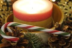 Xmas Candy Stick (MM) (pulitirachel) Tags: macromonday stick macro candystick
