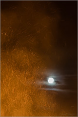 Moon and Sparks (mikeyp2000) Tags: wood flame bonfire dark night heat fire flames hot