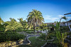 CUBA2017_PLAYAPESQUERO_21 (Dylon87) Tags: hotel suite resort playapesquero vacation fun great rafaelfreyre guardalavaca holguin cuba courtyard trees garden photo pic photographer photography teamcanon canon shotoncanon canoncanada