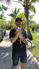 Chad Holding a Gator (renedrivers) Tags: evergladessafaripark renedrivers rchan415 florida