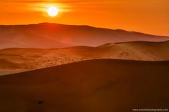 Dreamland @ Namib-Naukluft National Park, Namibia (Avisekh) Tags: sand sunrise dunes namibia bigdaddy sossusvlei canon 100400 leefilters tripod wwwavisekhphotographycom africa