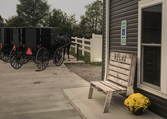 Take a Load Off (TuthFaree) Tags: benches photography benchmonday hbm amish buggies horses mthope ohio relax wooden fence building rural