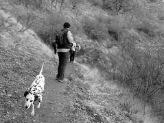 Vereda de la Estrella. Güéjar Sierra. Granada. (lameato feliz) Tags: granada sierra nevada senderodelaestrella perro güéjarsierra sendero paisaje landscape