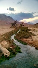 From beyond (MasMozaffary) Tags: water sunset oasis mountain landscape naturallandscape life green earth planetearth iran centraldesertofiran desert