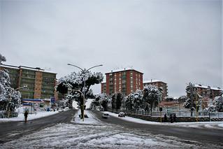 Roma Torrespaccata