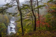 Tallulah (Jon Ariel) Tags: tallulahfallsstatepark tallulah waterfall fall autumn rain georgia ga