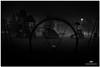 DECEMBER 2017  NGM_6662_3318-1-222 (Nick and Karen Munroe) Tags: beauty brampton beautiful blackandwhite bw blackwhite bandw monochrome mono park parkette parks playground canada fallcolors fall fog foggy fogpatches heavyfog winterfog mist misty mistpatches nikon nickmunroe nickandkarenmunroe nature nikon2470f28 nickandkaren nick nikond750 d750 2470 2470f28 nighttime nightshots nightphotography munroedesignsphotography munroedesigns munroephotography munroe karenick23 karenick karenandnickmunroe karenmunroe karenandnick karen landscape ontario outdoors ontariocanada