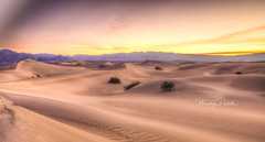 Death Valley Photo Group Tour by Maritza Partida 2017-3789_90-Edit (partida2012) Tags: badwaterbasin beatty ca dantesview deathvalley harmonyborax landscapephotography lasvegas meetup mesquiteflatdunes naperville nevada photogroup redrockcanyon rhyolite tourbymaritzapartida2017 zabriskiepoint