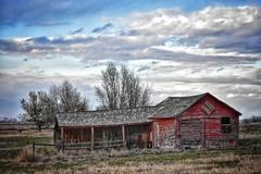 (CTfotomagik) Tags: agriculture barn crusty ruraldecay farm red weldcounty colorado