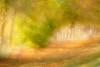 Interpretations on a theme 2 (alanrharris53) Tags: hindleysschool trees autumn leaf leaves interpretation variation shepshed 2017