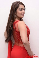 Kannada Times_Nikita Thukral_027
