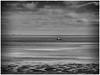 The Sails Are Set (kurtwolf303) Tags: föhr germany deutschland ocean sea water segelboot monochrome coast nordsee schleswigholstein bw sw olympusem1 omd microfourthirds micro43 systemcamera mirrorlesscamera mft kurtwolf303 northsea sailboat sky clouds wolken unlimitedphotos seascape landscape landschaft 250v10f 500v20f