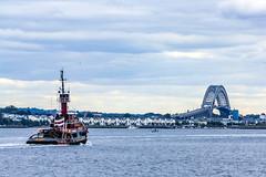 New York Harbor (JMFusco) Tags: newyorkharbor newyorkstate tugboat bridge nyc newyorkcity newyork bayonnebridge statenisland maritime marine ny