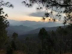 Sunrise (@nikondxfx (instagram)) Tags: sunrise dawn pithoragarh uttarakhand chaukori 2017 tree forest landscape layers mountains sky beautiful