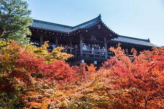 Tofukuji (東福寺) :: Kyoto (京都), Japan