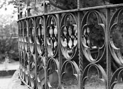 Still round the corner... (voeuxphotography) Tags: blackwhite blackandwhite australia nsw sydney 1894 old grave graveyard history fence iron gate noir bw mausoleum cemetery rookwood