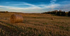 Harvest (free3yourmind) Tags: harvest bales hay clouds cloudy sky autumn belarus minsk hills field